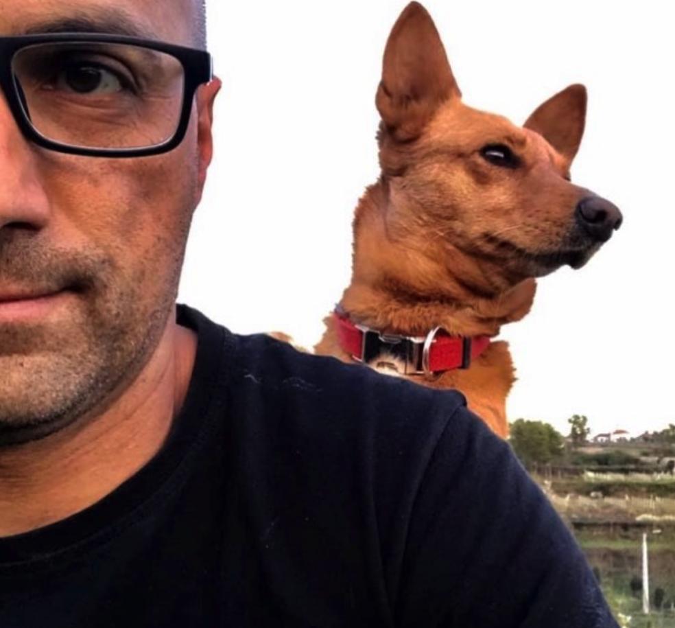 adestrador_canino_cão