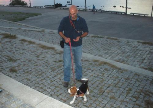 treino cães fafe 1 a